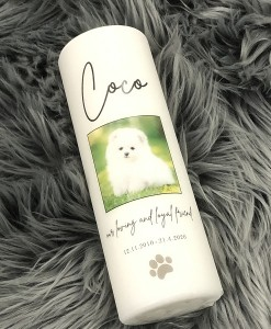 Pet Candle - Coco