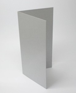 DL-folded-card-silver