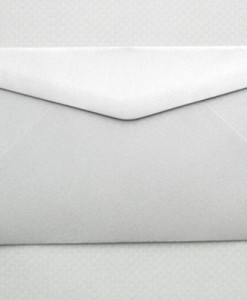 metallic-silver-dl-envelope