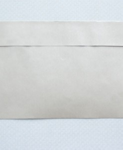 natural-nude-dl-envelopes