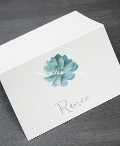 place-cards-succulent-green
